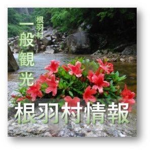 根羽村観光情報