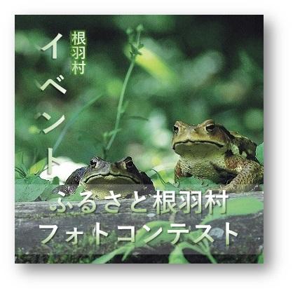 根羽村ふるさとフォトコンテスト